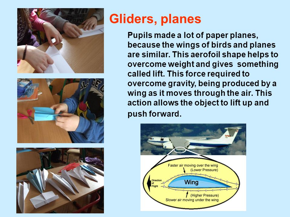 Gliders, planes Pupils made a lot of paper planes, because the wings of birds and planes are similar.