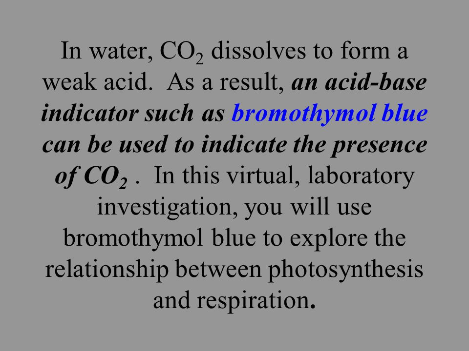What is the relationship between the processes of photosynthesis and cellular respiration.