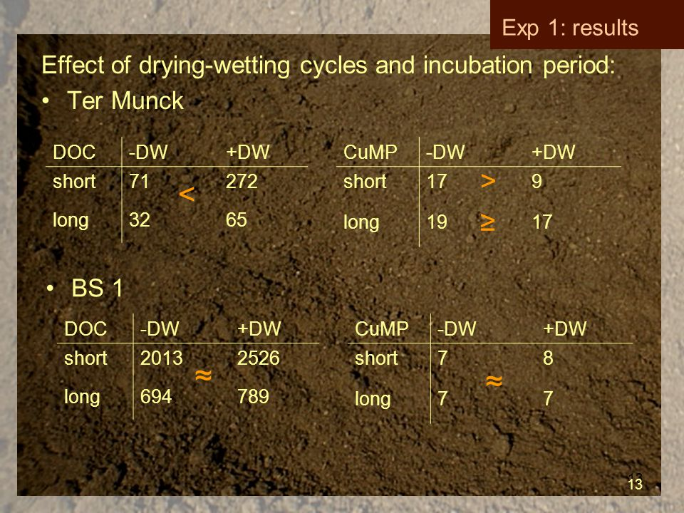 13 Effect of drying-wetting cycles and incubation period: Ter Munck CuMP-DW+DW short179 long1917 DOC-DW+DW short71272 long3265 DOC-DW+DW short20132526 long694789 CuMP-DW+DW short78 long77 < >≥>≥ ≈ ≈ 13 Exp 1: results BS 1