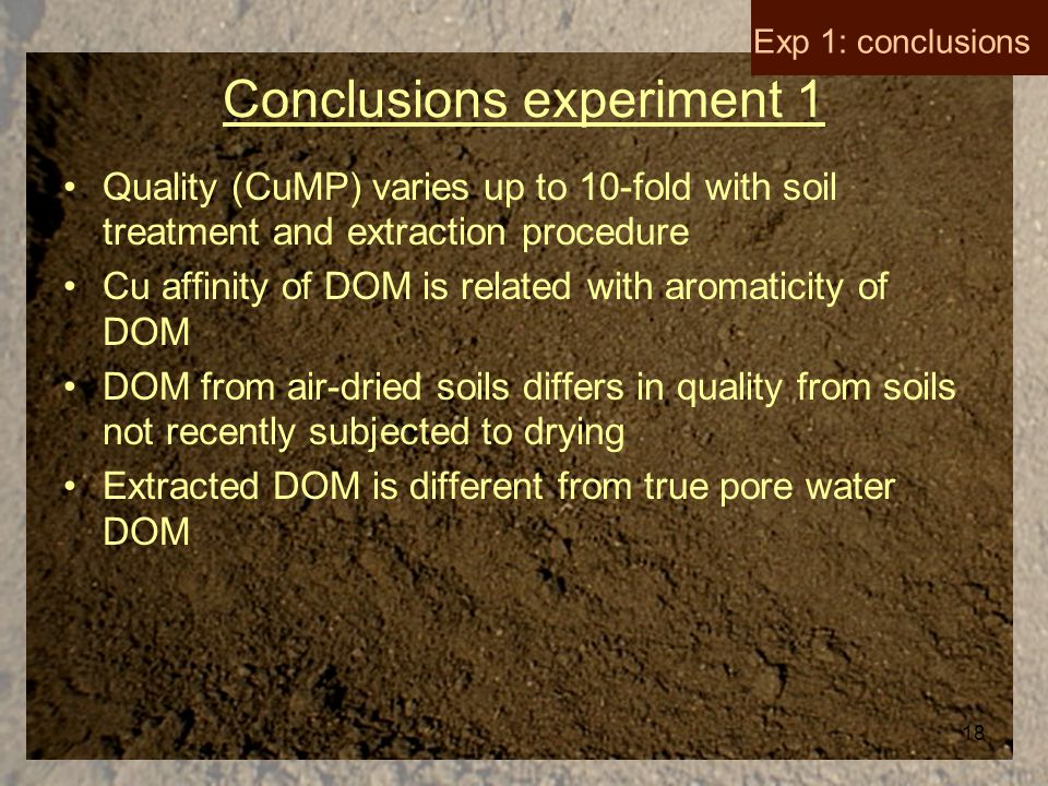 18 Conclusions experiment 1 Quality (CuMP) varies up to 10-fold with soil treatment and extraction procedure Cu affinity of DOM is related with aromaticity of DOM DOM from air-dried soils differs in quality from soils not recently subjected to drying Extracted DOM is different from true pore water DOM Exp 1: conclusions