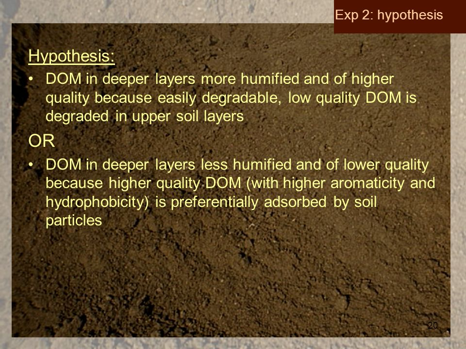 20 Hypothesis: DOM in deeper layers more humified and of higher quality because easily degradable, low quality DOM is degraded in upper soil layers OR DOM in deeper layers less humified and of lower quality because higher quality DOM (with higher aromaticity and hydrophobicity) is preferentially adsorbed by soil particles Exp 2: hypothesis