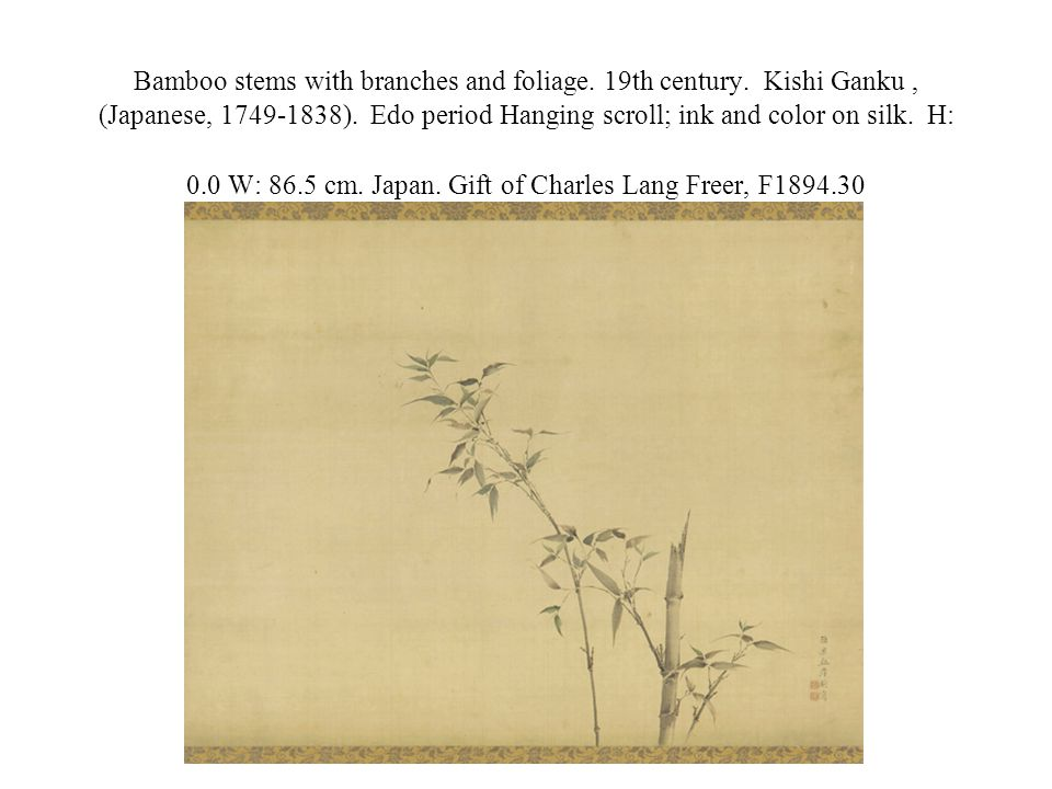 Bamboo stems with branches and foliage. 19th century.