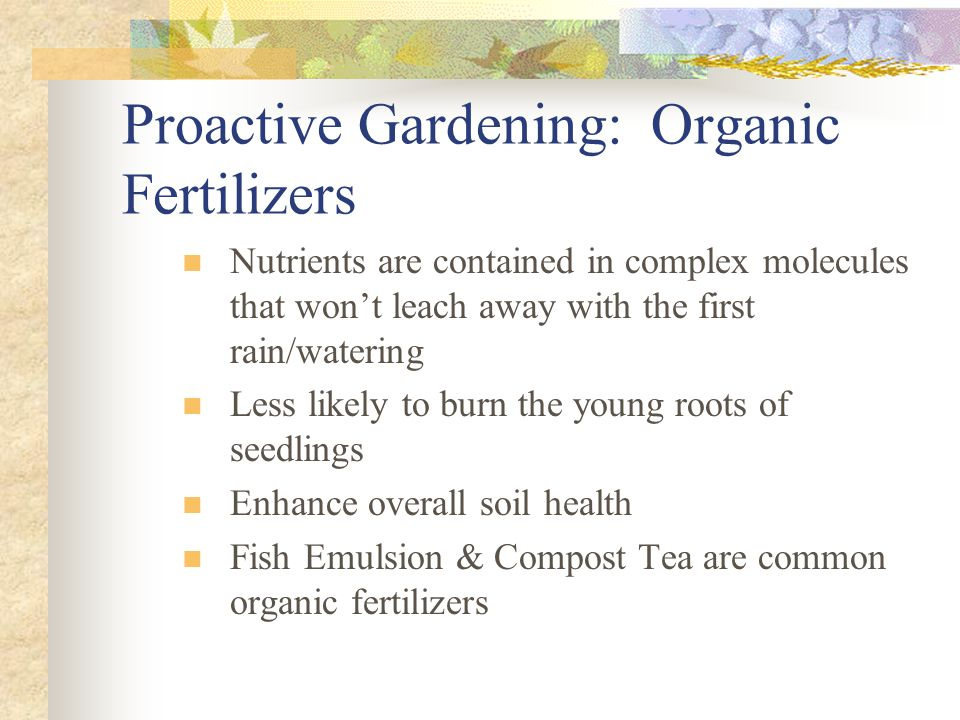Proactive Gardening: Organic Fertilizers Nutrients are contained in complex molecules that won't leach away with the first rain/watering Less likely t