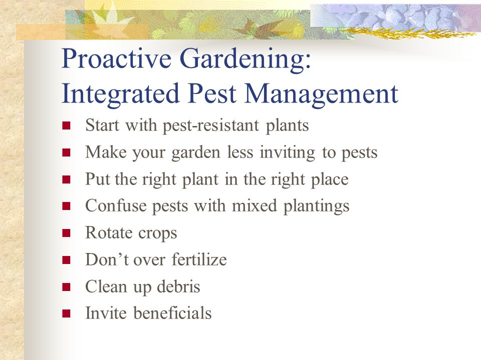Proactive Gardening: Integrated Pest Management Start with pest-resistant plants Make your garden less inviting to pests Put the right plant in the ri