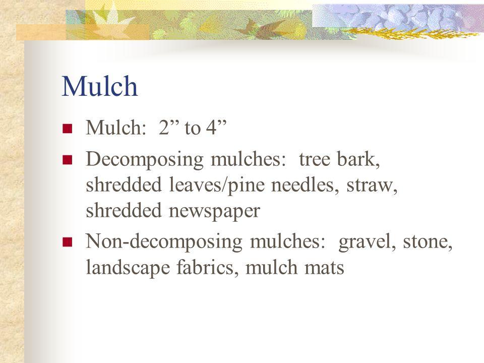 "Mulch Mulch: 2"" to 4"" Decomposing mulches: tree bark, shredded leaves/pine needles, straw, shredded newspaper Non-decomposing mulches: gravel, stone,"