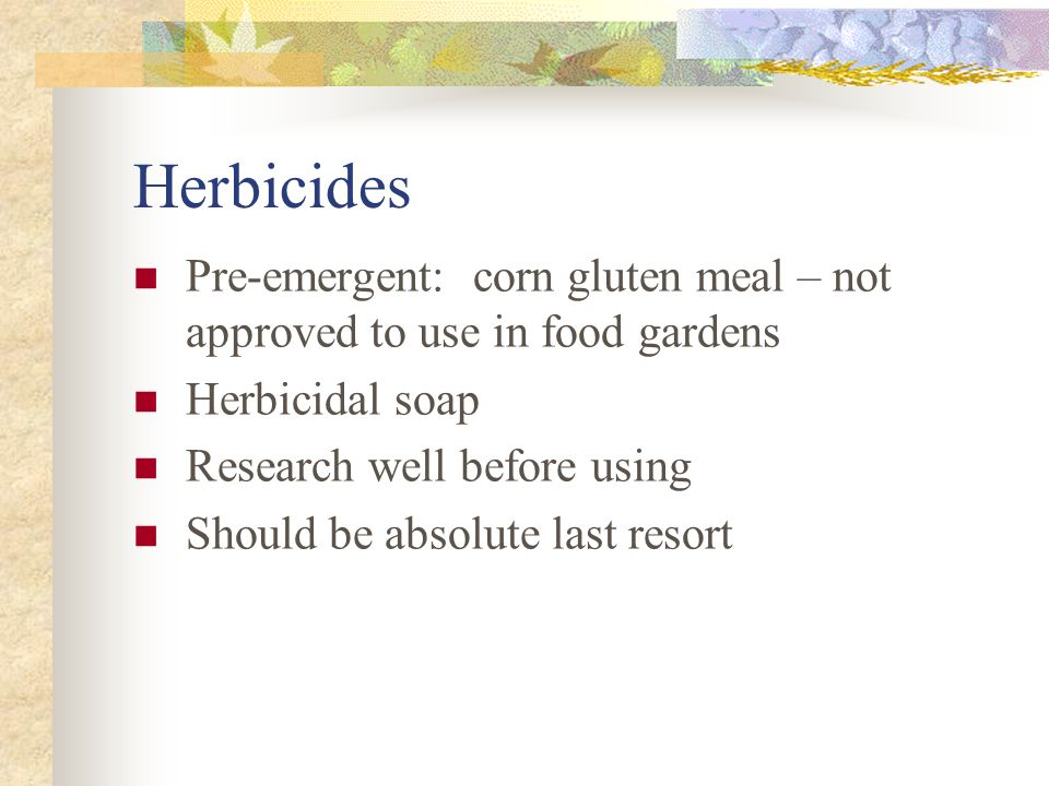 Herbicides Pre-emergent: corn gluten meal – not approved to use in food gardens Herbicidal soap Research well before using Should be absolute last res