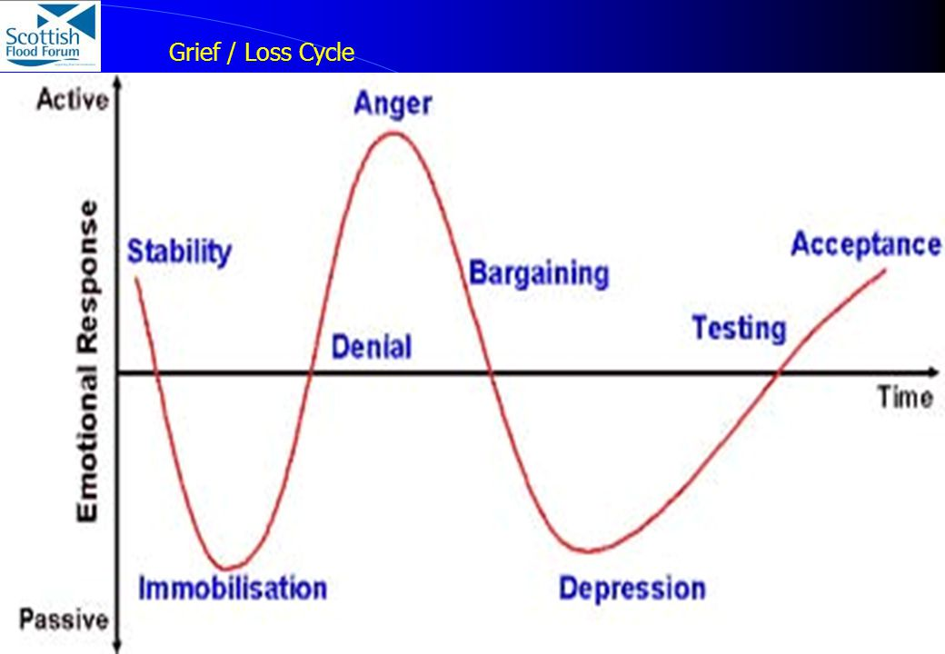 10 © Paul Hendy - Scottish Flood Forum Grief / Loss Cycle