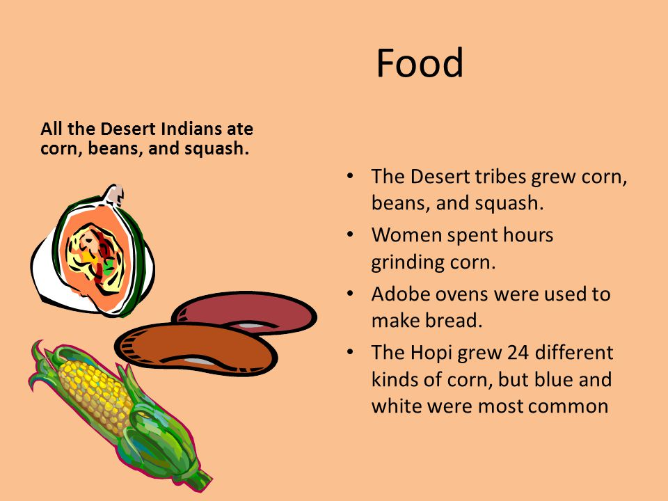 Food The Desert tribes grew corn, beans, and squash.