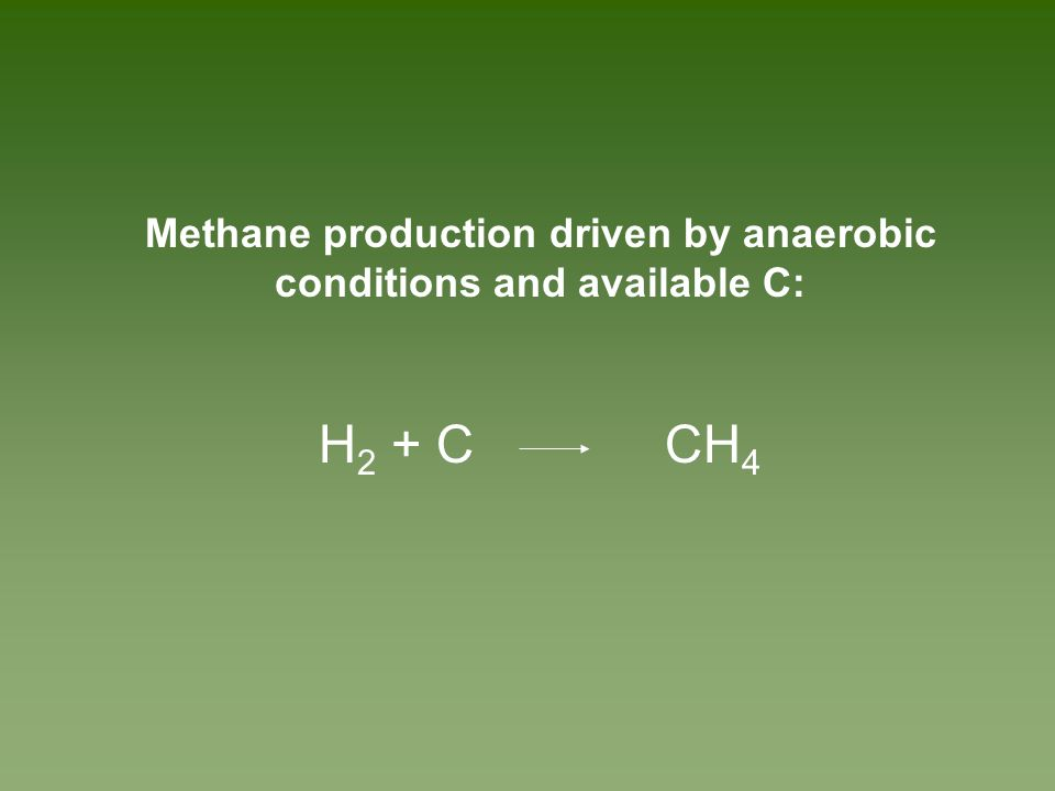 Methane production driven by anaerobic conditions and available C: H 2 + C CH 4
