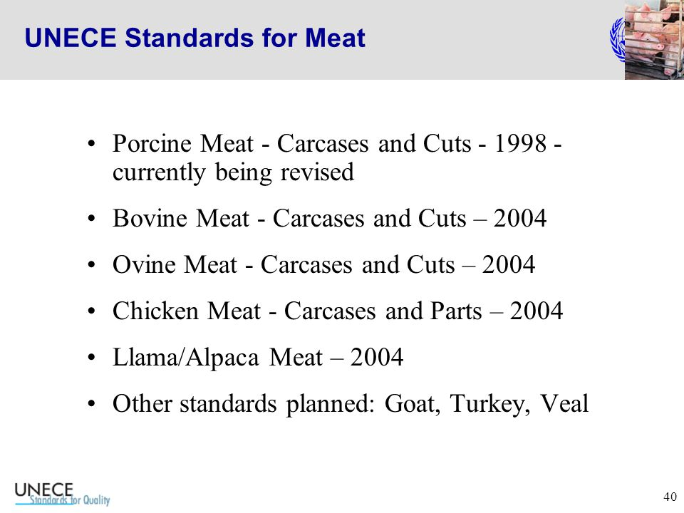 40 UNECE Standards for Meat Porcine Meat - Carcases and Cuts - 1998 - currently being revised Bovine Meat - Carcases and Cuts – 2004 Ovine Meat - Carcases and Cuts – 2004 Chicken Meat - Carcases and Parts – 2004 Llama/Alpaca Meat – 2004 Other standards planned: Goat, Turkey, Veal
