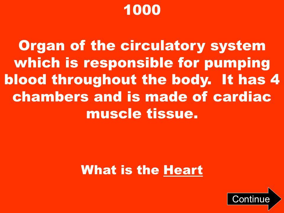 1000 Organ of the circulatory system which is responsible for pumping blood throughout the body.