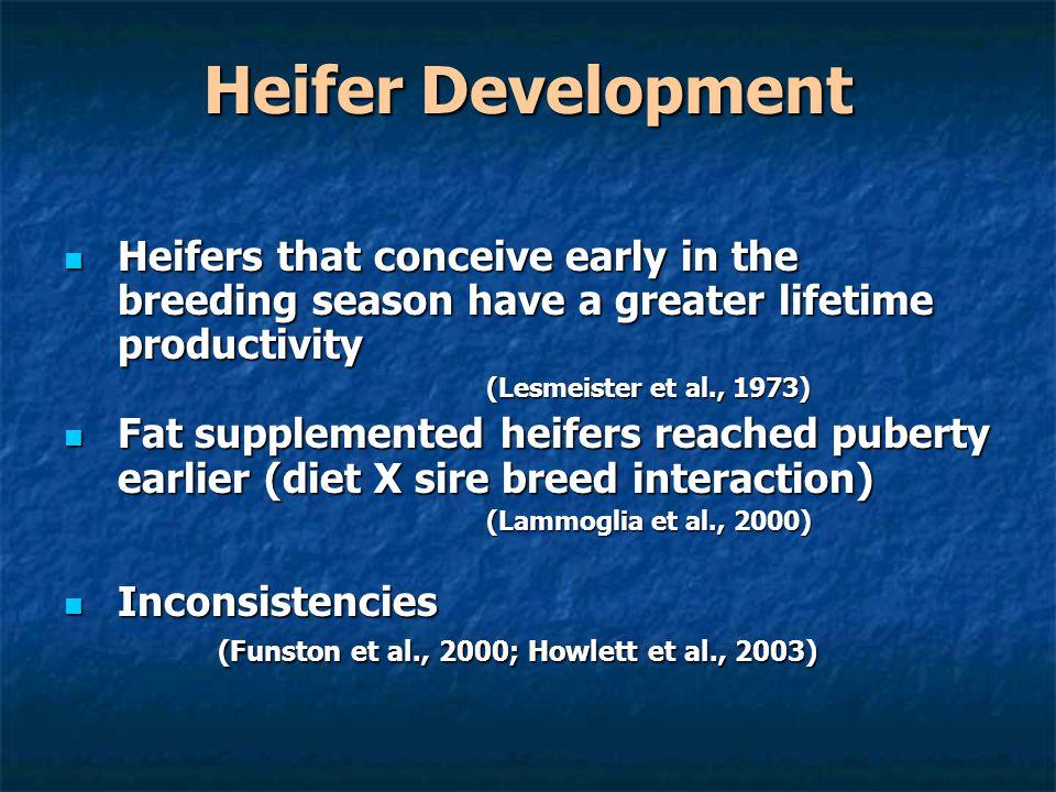 Heifer Development Heifers that conceive early in the breeding season have a greater lifetime productivity Heifers that conceive early in the breeding season have a greater lifetime productivity (Lesmeister et al., 1973) Fat supplemented heifers reached puberty earlier (diet X sire breed interaction) Fat supplemented heifers reached puberty earlier (diet X sire breed interaction) (Lammoglia et al., 2000) Inconsistencies (Funston et al., 2000; Howlett et al., 2003) Inconsistencies (Funston et al., 2000; Howlett et al., 2003)