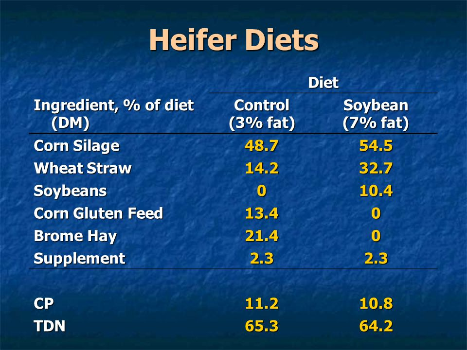 Heifer Diets Diet Ingredient, % of diet (DM) Control (3% fat) Soybean (7% fat) Corn Silage 48.754.5 Wheat Straw 14.232.7 Soybeans010.4 Corn Gluten Fee