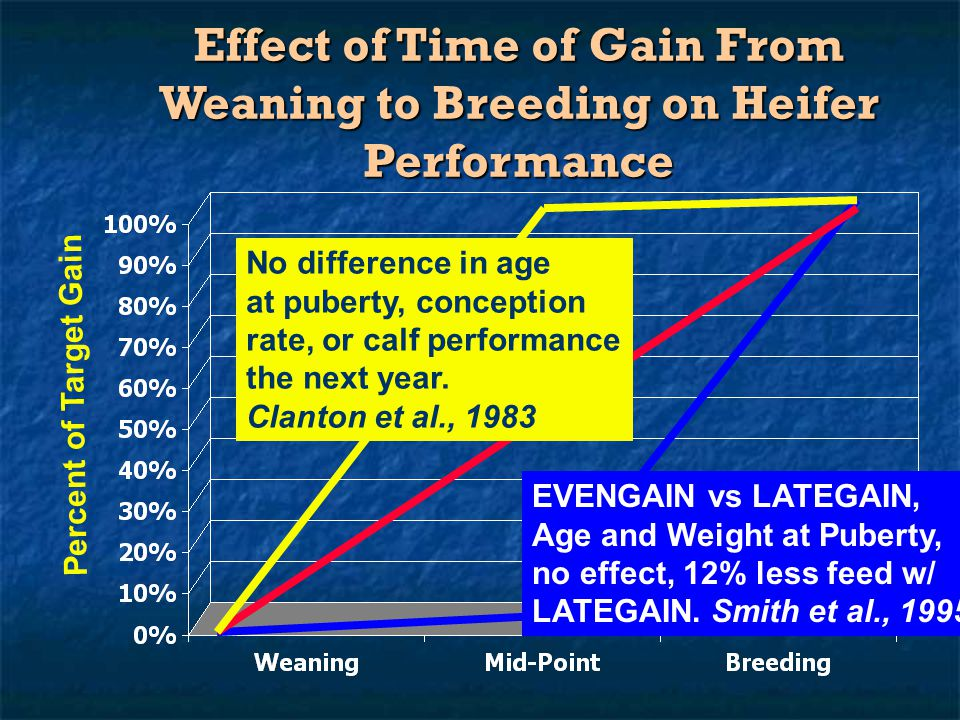 Effect of Time of Gain From Weaning to Breeding on Heifer Performance Percent of Target Gain No difference in age at puberty, conception rate, or calf