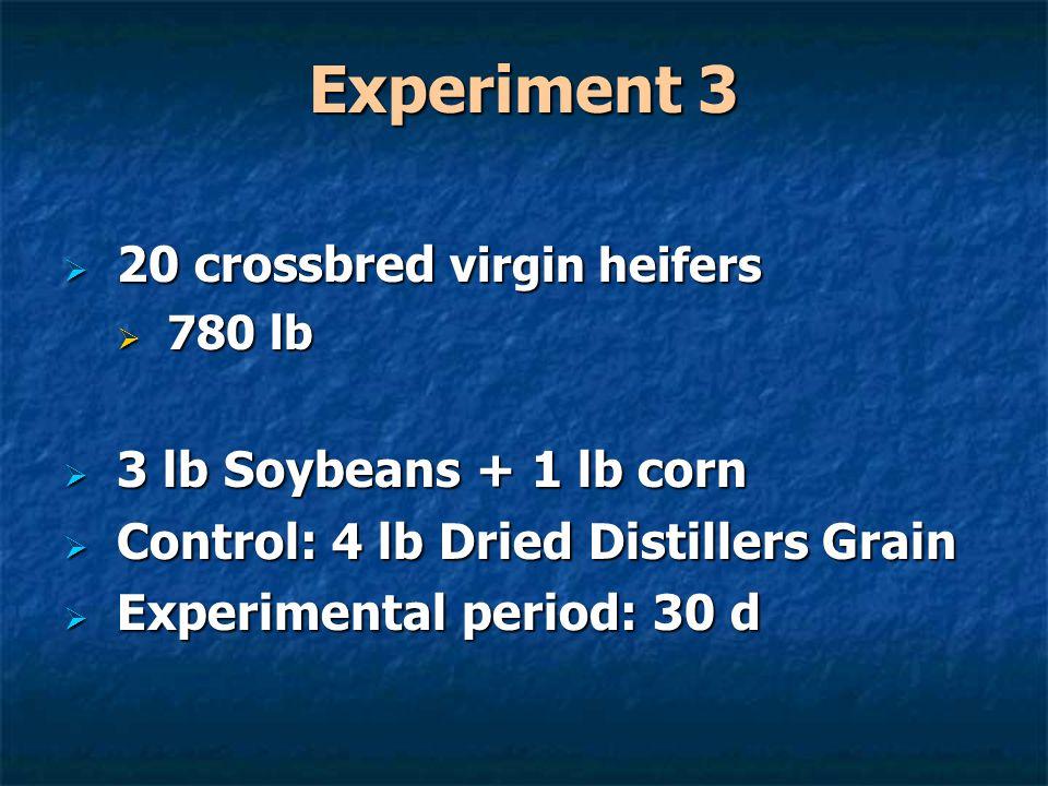 Experiment 3  20 crossbred virgin heifers  780 lb  3 lb Soybeans + 1 lb corn  Control: 4 lb Dried Distillers Grain  Experimental period: 30 d