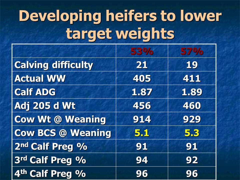 Developing heifers to lower target weights 53%57% Calving difficulty 2119 Actual WW 405411 Calf ADG 1.871.89 Adj 205 d Wt 456460 Cow Wt @ Weaning 914929 Cow BCS @ Weaning 5.15.3 2 nd Calf Preg % 9191 3 rd Calf Preg % 9492 4 th Calf Preg % 9696
