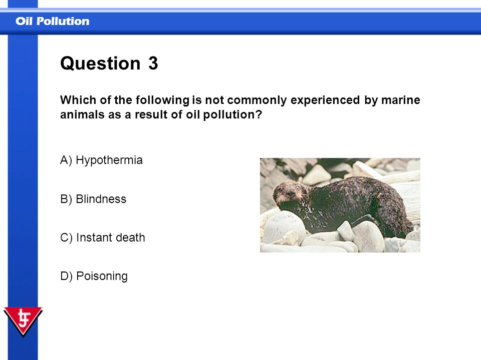 Oil Pollution 3 Which of the following is not commonly experienced by marine animals as a result of oil pollution? Question A) Hypothermia B) Blindnes
