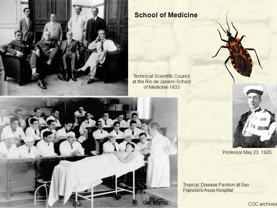 Tropical Disease Pavilion at Sao Francisco Assis Hospital Technical-Scientific Council at the Rio de Janeiro School of Medicine-1933 Professor May 23, 1925 COC archives School of Medicine