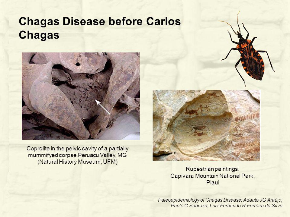 Paleoepidemiology of Chagas Disease, Adauto JG Araújo, Paulo C Sabroza, Luiz Fernando R Ferreira da Silva Rupestrian paintings.