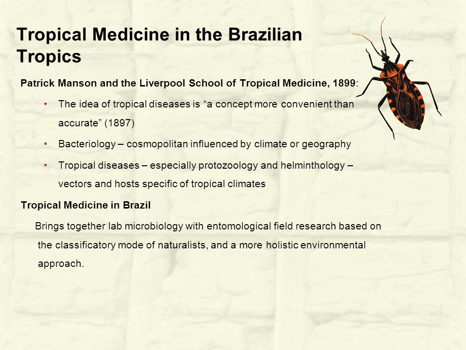 Tropical Medicine in the Brazilian Tropics Patrick Manson and the Liverpool School of Tropical Medicine, 1899: The idea of tropical diseases is a concept more convenient than accurate (1897) Bacteriology – cosmopolitan influenced by climate or geography Tropical diseases – especially protozoology and helminthology – vectors and hosts specific of tropical climates Tropical Medicine in Brazil Brings together lab microbiology with entomological field research based on the classificatory mode of naturalists, and a more holistic environmental approach.