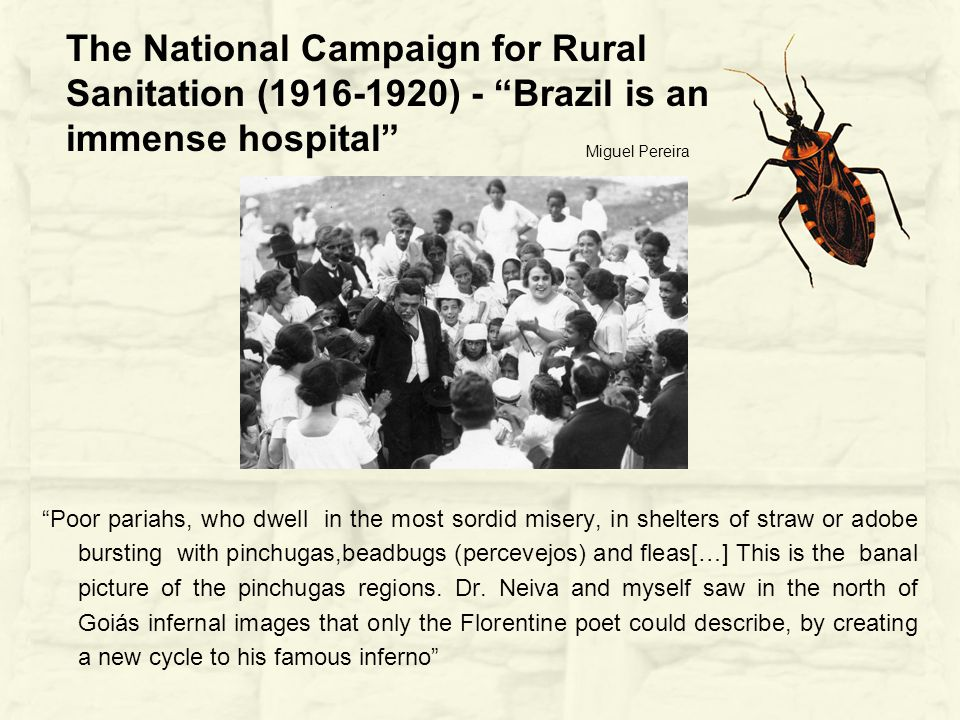 The National Campaign for Rural Sanitation (1916-1920) - Brazil is an immense hospital Poor pariahs, who dwell in the most sordid misery, in shelters of straw or adobe bursting with pinchugas,beadbugs (percevejos) and fleas[…] This is the banal picture of the pinchugas regions.