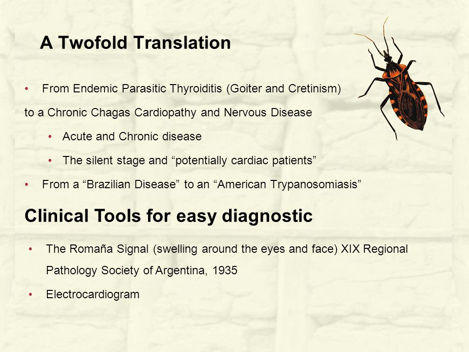 A Twofold Translation From Endemic Parasitic Thyroiditis (Goiter and Cretinism) to a Chronic Chagas Cardiopathy and Nervous Disease Acute and Chronic disease The silent stage and potentially cardiac patients From a Brazilian Disease to an American Trypanosomiasis Clinical Tools for easy diagnostic The Romaña Signal (swelling around the eyes and face) XIX Regional Pathology Society of Argentina, 1935 Electrocardiogram