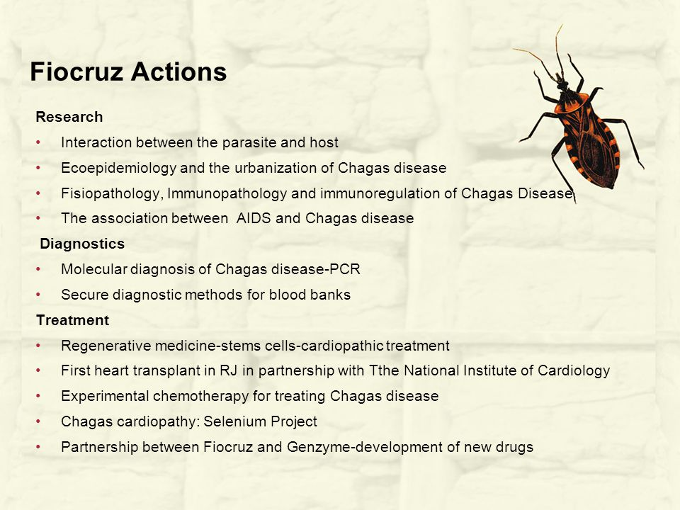 Fiocruz Actions Research Interaction between the parasite and host Ecoepidemiology and the urbanization of Chagas disease Fisiopathology, Immunopathology and immunoregulation of Chagas Disease The association between AIDS and Chagas disease Diagnostics Molecular diagnosis of Chagas disease-PCR Secure diagnostic methods for blood banks Treatment Regenerative medicine-stems cells-cardiopathic treatment First heart transplant in RJ in partnership with Tthe National Institute of Cardiology Experimental chemotherapy for treating Chagas disease Chagas cardiopathy: Selenium Project Partnership between Fiocruz and Genzyme-development of new drugs