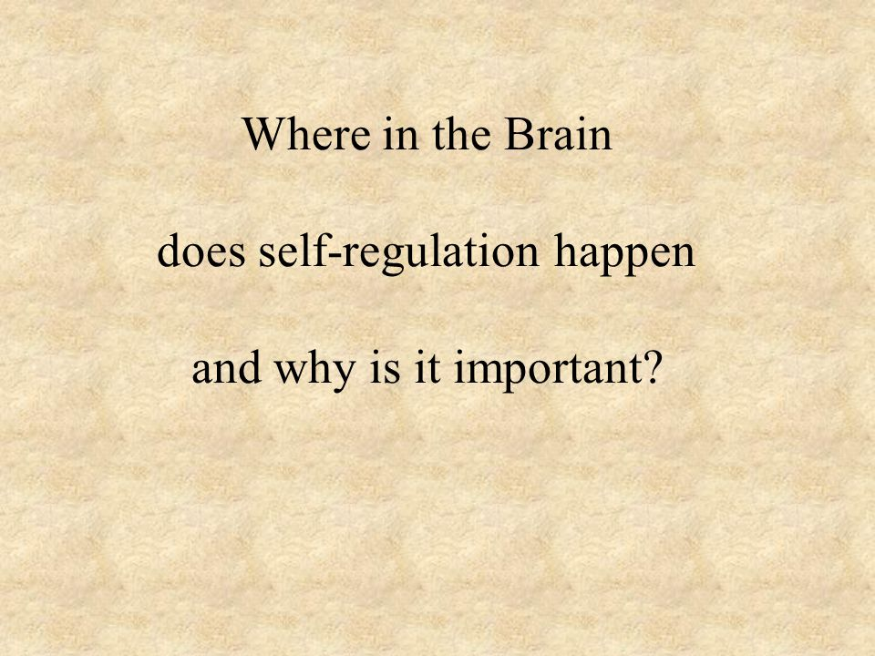 Where in the Brain does self-regulation happen and why is it important?