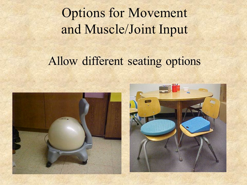 Options for Movement and Muscle/Joint Input Allow different seating options
