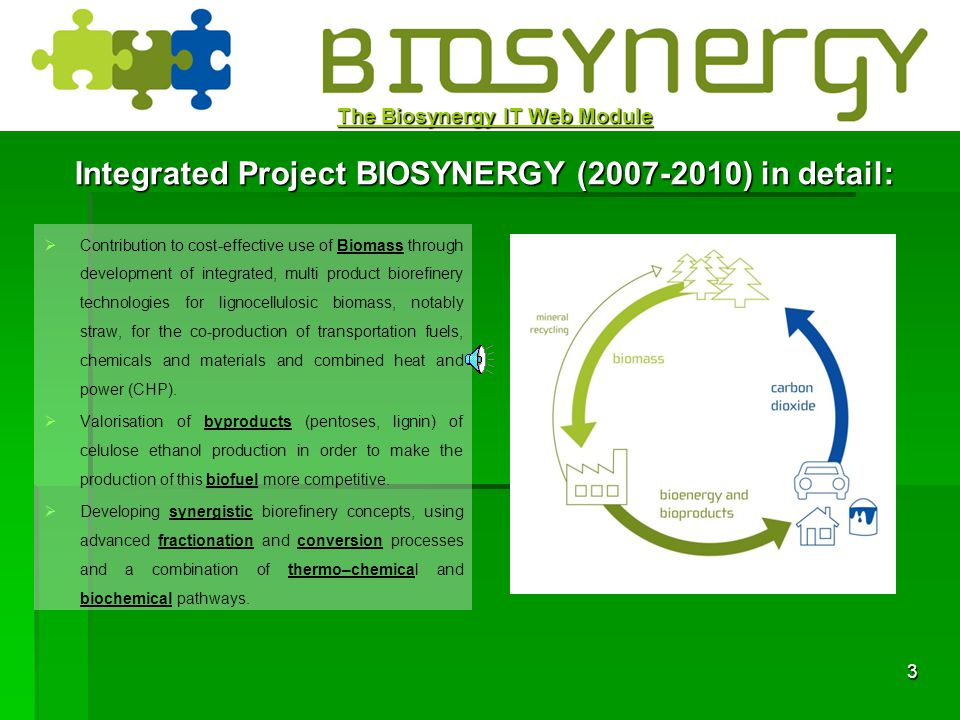 2 The Biosynergy IT Web Module BIOSYNERGY IP simplified: consists in: developing multiproduct cellulose-ethanol based biorefinery technology; focussin