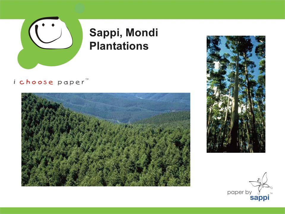 Sappi, Mondi Plantations