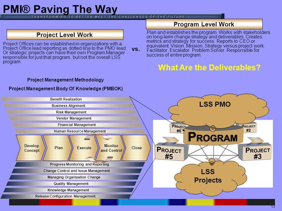 13 Project Level Work Program Level Work vs.