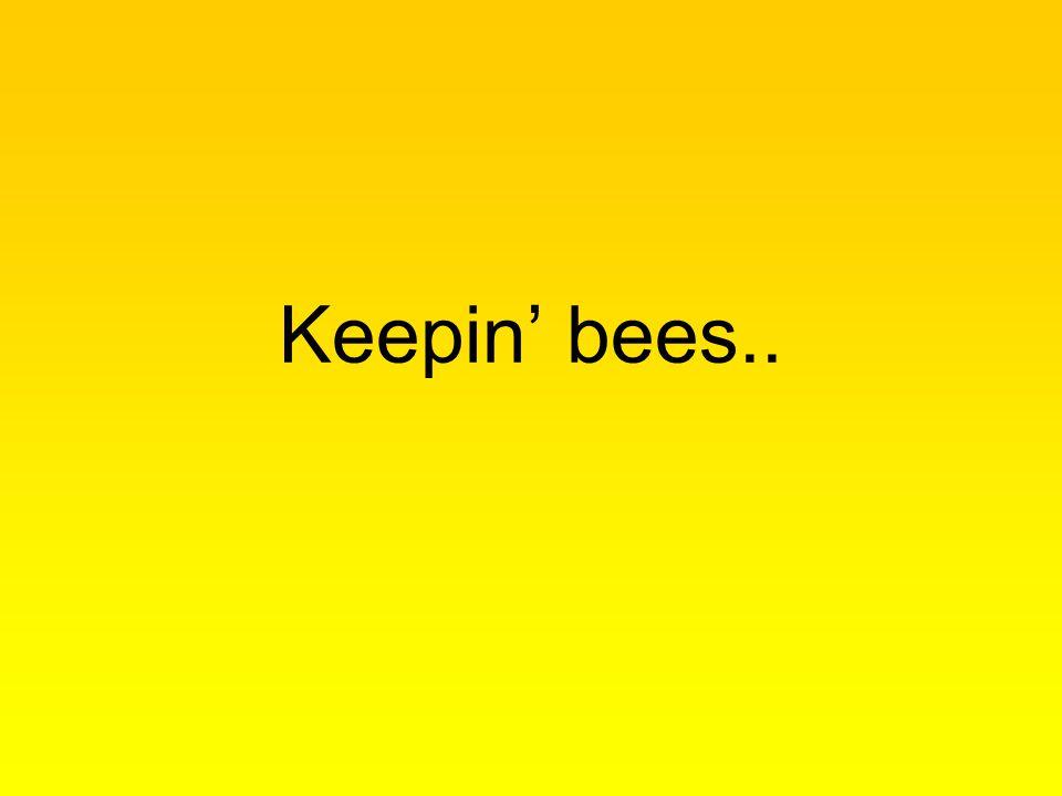 Keepin' bees..
