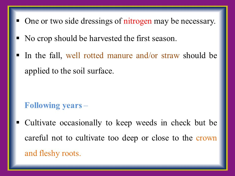  One or two side dressings of nitrogen may be necessary.  No crop should be harvested the first season.  In the fall, well rotted manure and/or str