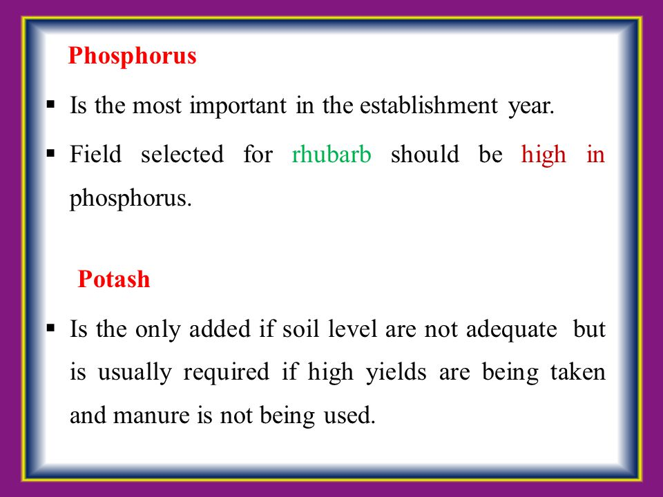 Phosphorus  Is the most important in the establishment year.  Field selected for rhubarb should be high in phosphorus. Potash  Is the only added if