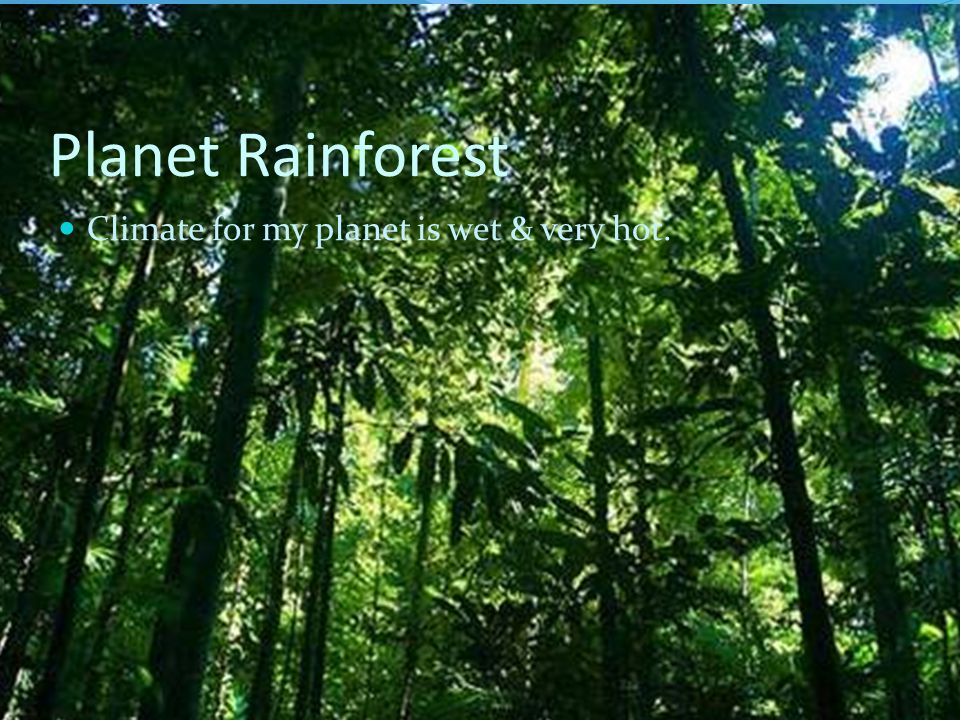 Planet Rainforest Climate for my planet is wet & very hot.