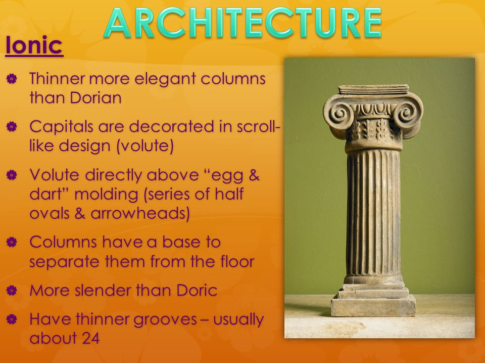 Ionic  Thinner more elegant columns than Dorian  Capitals are decorated in scroll- like design (volute)  Volute directly above egg & dart molding (series of half ovals & arrowheads)  Columns have a base to separate them from the floor  More slender than Doric  Have thinner grooves – usually about 24