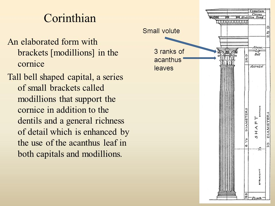 Corinthian An elaborated form with brackets [modillions] in the cornice Tall bell shaped capital, a series of small brackets called modillions that support the cornice in addition to the dentils and a general richness of detail which is enhanced by the use of the acanthus leaf in both capitals and modillions.