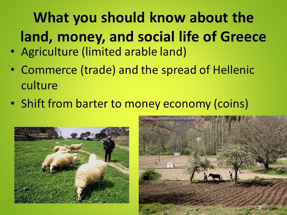 What you should know about the land, money, and social life of Greece Agriculture (limited arable land) Commerce (trade) and the spread of Hellenic cu