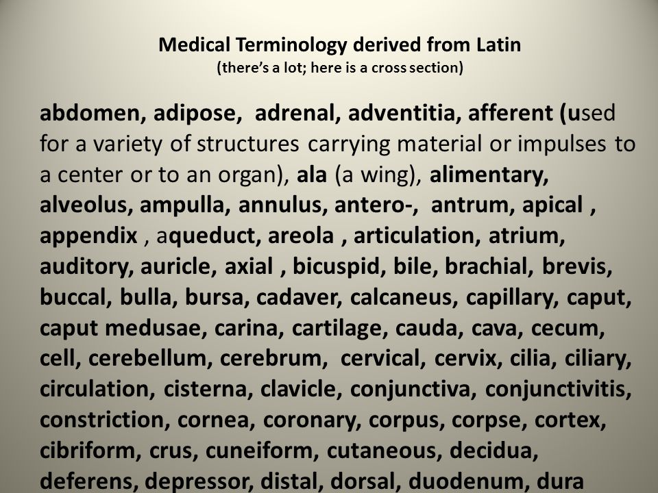 Medical Terminology derived from Latin (there's a lot; here is a cross section) abdomen, adipose, adrenal, adventitia, afferent (used for a variety of
