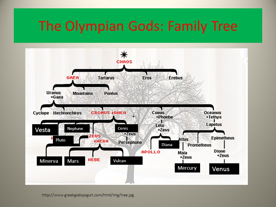 The Olympian Gods: Family Tree Vesta http://www.greekgodsyogurt.com/html/img/tree.jpg Neptune Pluto MinervaMars Vulcan Ceres Mercury Venus Diana