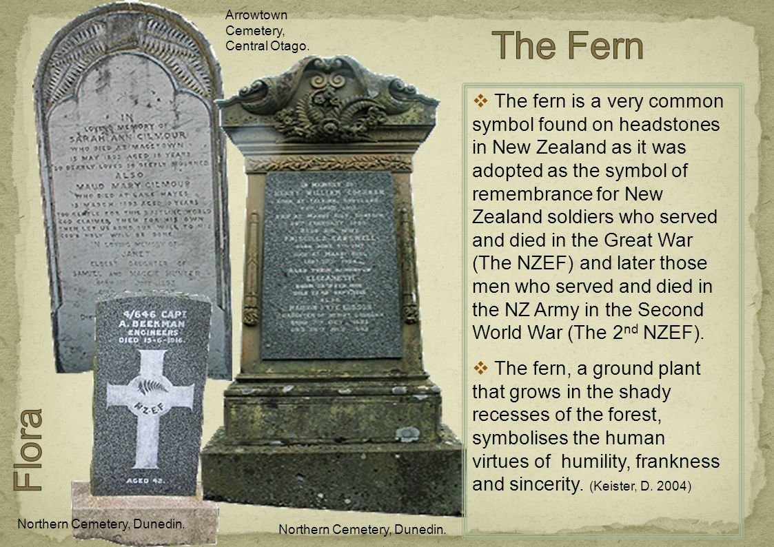  The fern is a very common symbol found on headstones in New Zealand as it was adopted as the symbol of remembrance for New Zealand soldiers who served and died in the Great War (The NZEF) and later those men who served and died in the NZ Army in the Second World War (The 2 nd NZEF).