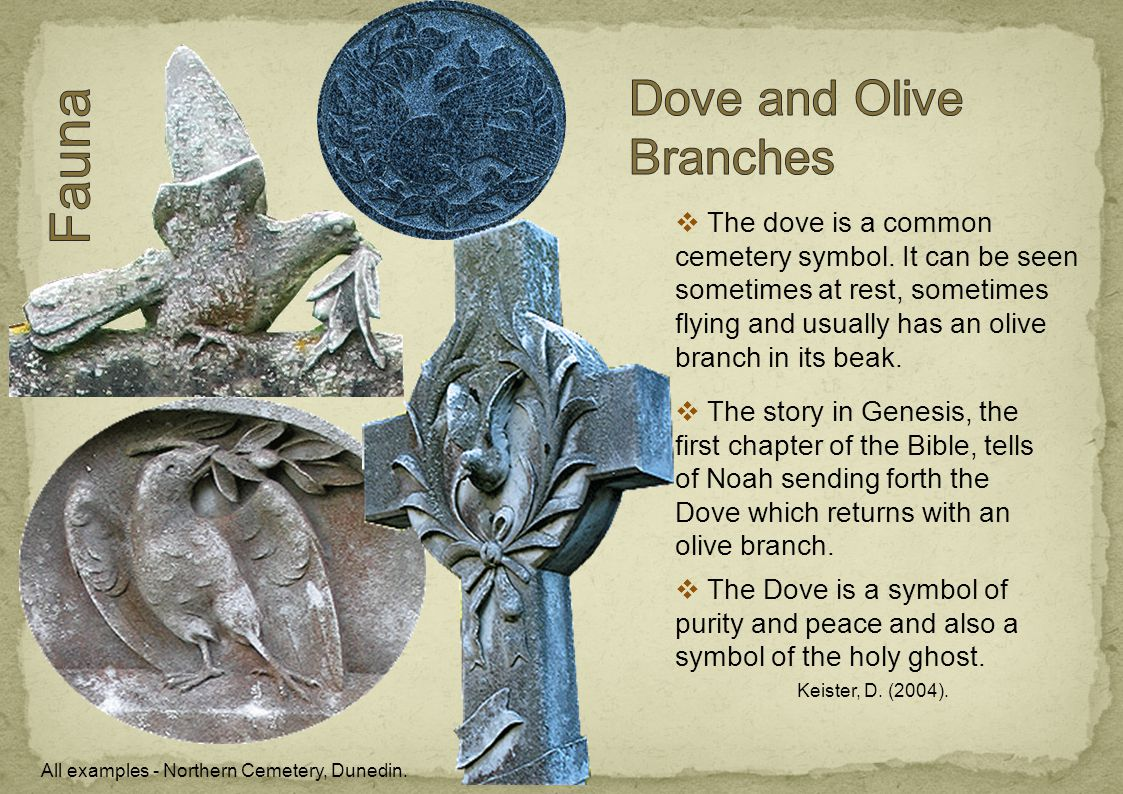  The dove is a common cemetery symbol. It can be seen sometimes at rest, sometimes flying and usually has an olive branch in its beak.  The Dove is