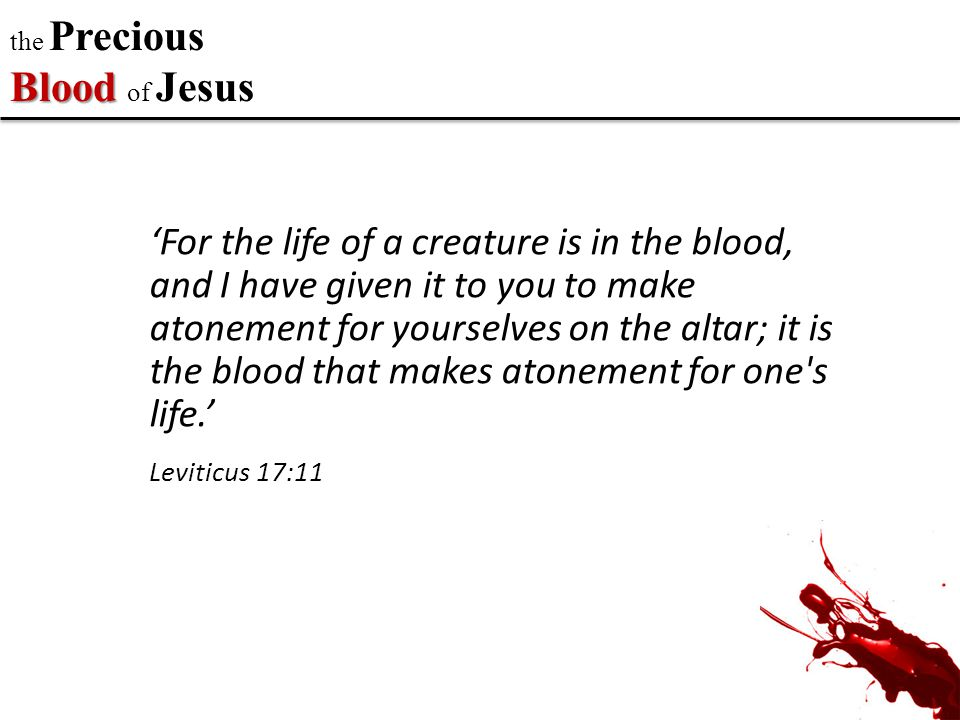 the Precious Blood of Jesus … For Christ, our Passover lamb, has been sacrificed. 1 Corinthians 5:7