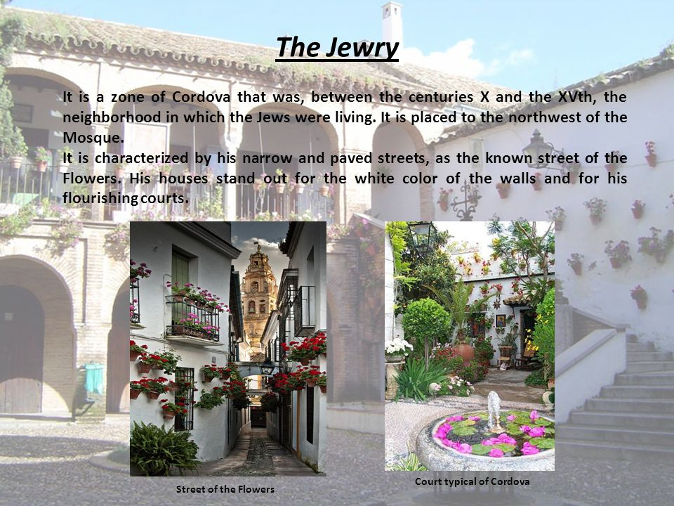 The Jewry It is a zone of Cordova that was, between the centuries X and the XVth, the neighborhood in which the Jews were living. It is placed to the