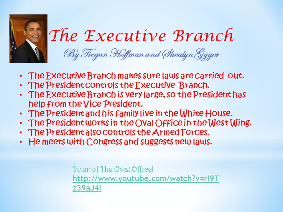 The Executive Branch By Tiegan Hoffman and Shealyn Gyger The Executive Branch makes sure laws are carried out.