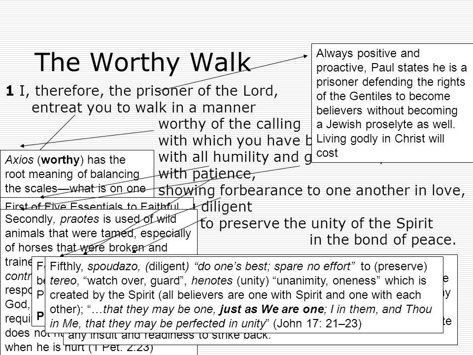 3 Cause of the Worthy Walk 4 There is one body and one Spirit, just as also you were called in one hope of your calling; 5 one Lord, one faith, one baptism, 6 one God and Father of all who is over all and through all and in all.