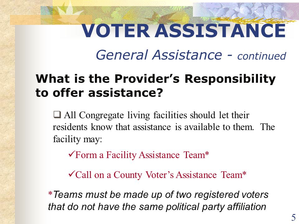 16 VOTER ASSISTANCE Voting The Ballot When assisting an individual to vote their ballot DO:  Respect the voter's request for privacy  Check the instructions on the ballot and have the voter use either a pen (blue or black ink only) or a No.