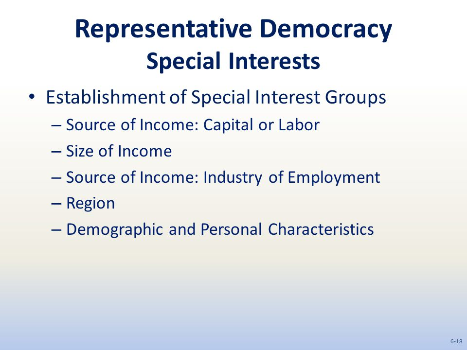 Representative Democracy Special Interests Establishment of Special Interest Groups – Source of Income: Capital or Labor – Size of Income – Source of