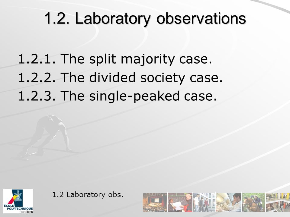 1.2. Laboratory observations 1.2.1. The split majority case.